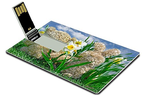 Luxlady 32GB USB Flash Drive 2.0 Memory Stick Credit Card Size teddy bear and bunny in daffodils IMAGE 19425863 (Daffodil Bear)