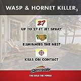 Spectracide HG-95715 Wasp & Hornet