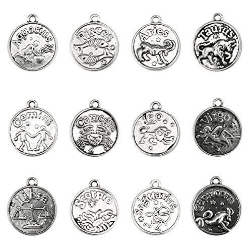 BEADNOVA Antique Tibetan Silver Zodiac Horoscope Pendant Crafting Charm Beads Findings for Bracelet Necklace Jewelry Making 12pcs Assorted (Zodiac Earrings Necklace)