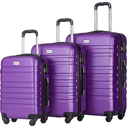 Merax Luggages 3 Piece Luggage Set Lightweight Spinner Suitcase (Purple) by Merax