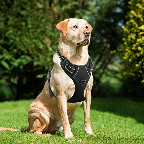 - Lifepul Front Clip No Pull Dog Vest Harness - Dog Body Padded Reflective Vest with Handle - Oxford Material Vest for Dogs Comfort Control for Small Medium Large Dogs in Training &Walking