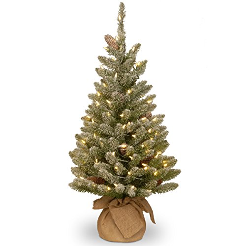 National Tree 3 Foot Snowy Concolor Fir Tree with Snowy Cones and 50 Battery Operated Warm White LED Lights in Burlap Base (SR1-328-30-B1) (Lighted Three Foot Christmas Tree)