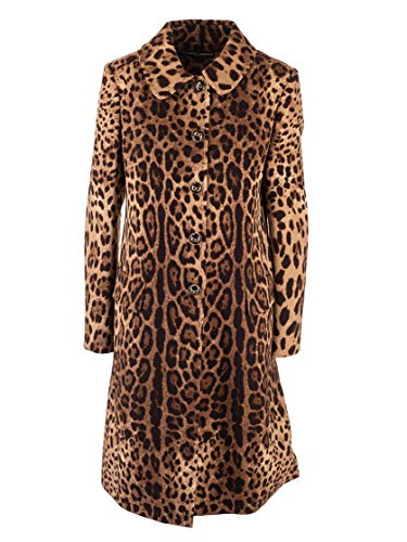 Dolce e Gabbana Luxury Fashion Womens F0X87TFS2A3HY13M Brown Coat | Fall Winter 19