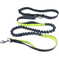 Hands Free Dog Leash,PYRUS Dual Handle Running Leash Shock Absorbing Extendible Bungee Adjustable Waist Belt For Running Walking & Jogging (Green)