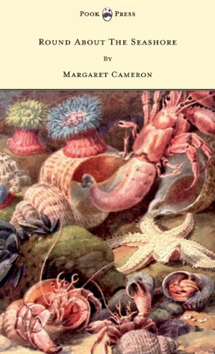 book cover of Round About the Seashore