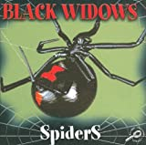 Black Widow Spiders, Jason Cooper, 1595154450