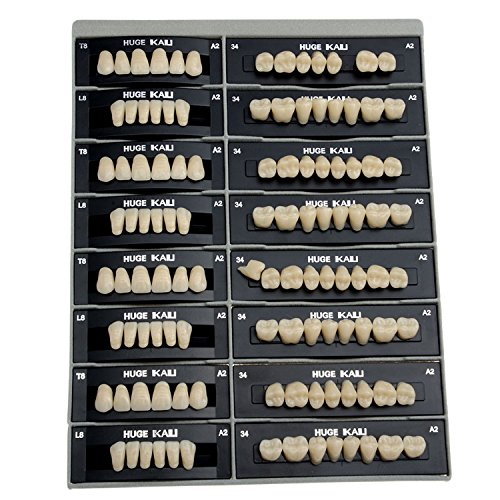 AZDENT Dental Synthetic Resin Tooth Denture T8-A2(28 units/4