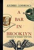 A Bar in Brooklyn, 1970-1978, Andrei Codrescu, 1574230980