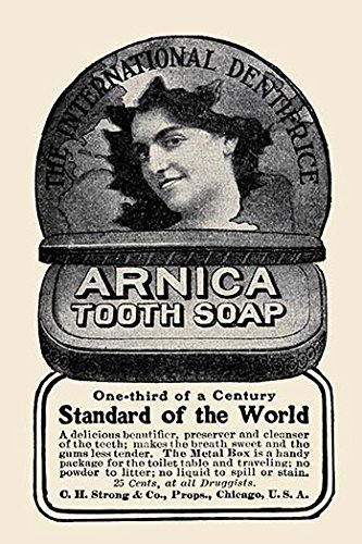 Buyenlarge 0-587-23123-8-P1218 Arnica Tooth Soap Paper Poster, 12