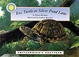 Box Turtle At Silver Pond Lane (Smithsonian Backyard)