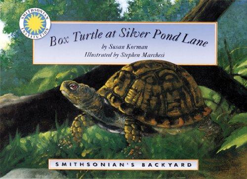 box-turtle-at-silver-pond-lane-a-smithsonians-backyard-book