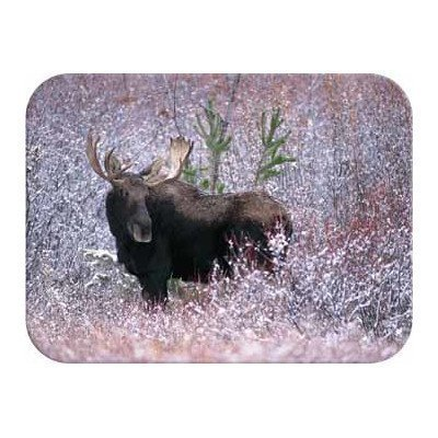 (Tuftop Christmas Moose Cutting Board Size: Medium (12x16) by McGowan)
