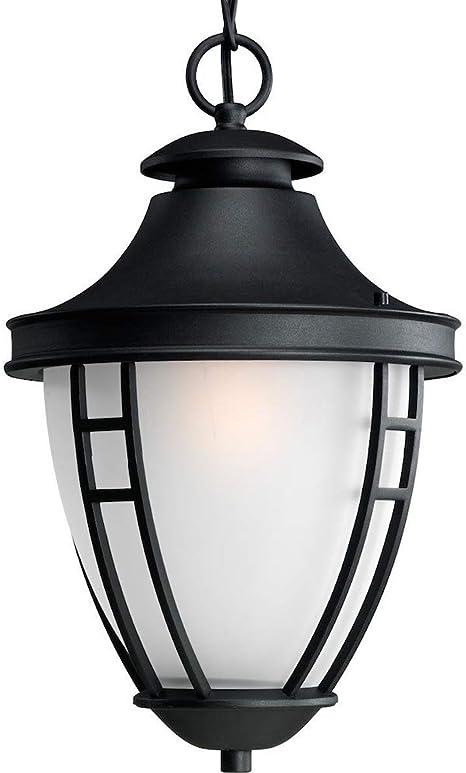 Progress Lighting Fairview Collection 1-Light Outdoor Textured Black LED Hanging Lantern