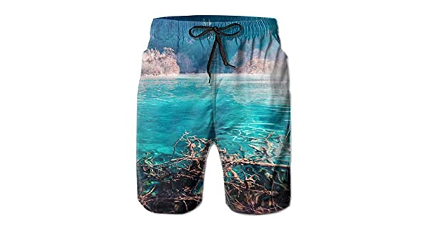 Hateone Mens Beach Shorts Quick Dry Feather Summer Holiday Mesh Lining Swimwear Board Shorts with Pockets