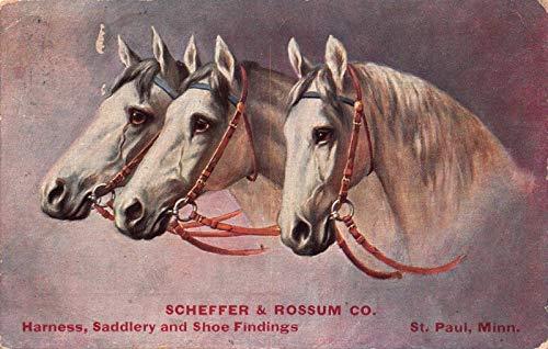Advertising PC Scheffer & Rossum Harness Saddlery Shoe Findings Minnesota~119285
