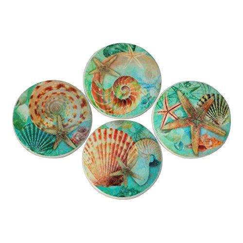 Set of 4 Nautilus Seashell Oversized Cabinet Knobs (Blue) (Cabinets Coastal)