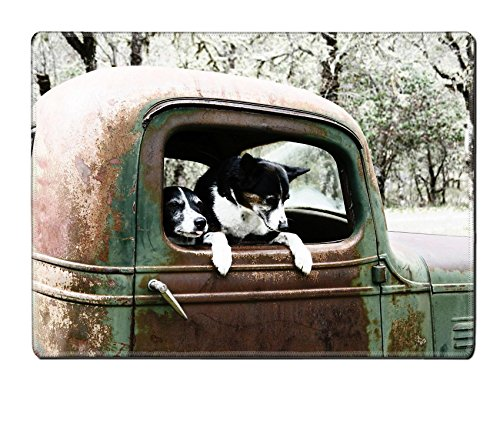Luxlady Placemats IMAGE ID 4753232 Two Black and White Dogs in an old Truck ()