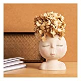 FUNSOBA Statue Face Planters Pots Bust Head Shaped