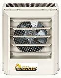 Dr Infrared Heater Heavy Duty Electric Fan Unit Heater, 208V/3KW Dr. Heater Infrared Heaters