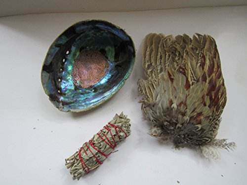 Smudge Kit Pheasant Feather Fan Abalone Shell & White Sage Smudging Tribal 4 (Fan Smudge)