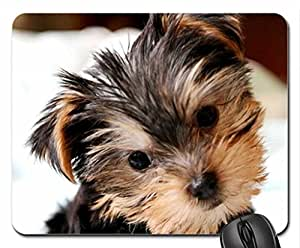 Anyone wants ME Mouse Pad, Mousepad (Dogs Mouse Pad)