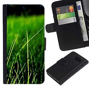 All Phone Most Case / Oferta Especial Cáscara Funda de cuero Monedero Cubierta de proteccion Caso / Wallet Case for Samsung Galaxy S6 // Nature Beautiful Forrest Green 84