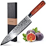 HUFTGOLD 8-inch Professional Japanese Damascus Knife, Kitchen Chef Knife with 67-Layer Japanese VG-10 High Carbon Steel Blade and Wooden Handle