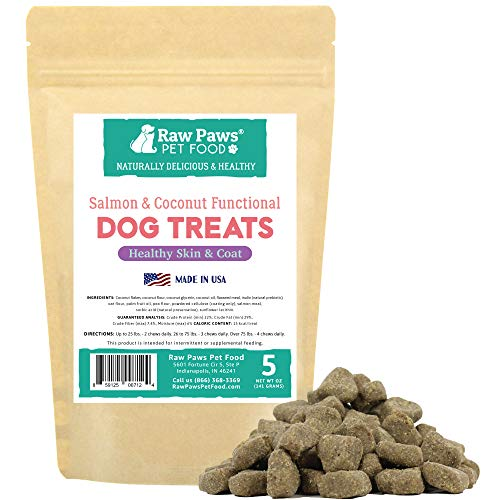 Raw Paws Omega 3 Chews for Dogs, 5-oz/50-ct - USA Made - Coconut & Salmon Dog Treats, Soft Skin Chews - Itchy, Dry Skin Dog Treats Help Support a Healthy Dog Coat - Skin and Coat Supplement for Dogs