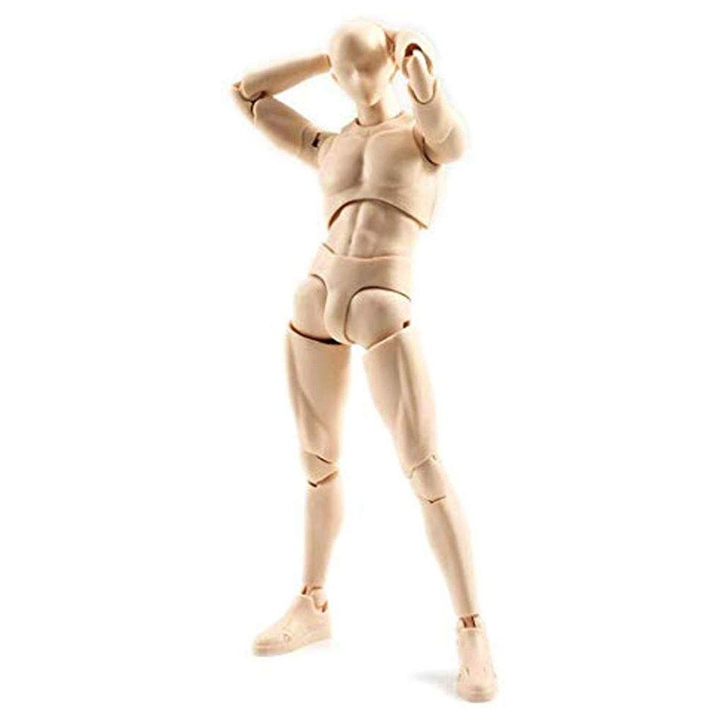 Human Mannequin Action Figure Model Set with Accessories Kit for Sketching Action Figure Models for Artists Black, Female ree Ship Deal Body Kun Artist Painting Drawing