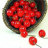 IETONE 200 Pieces Artificial Cherries, Lifelike