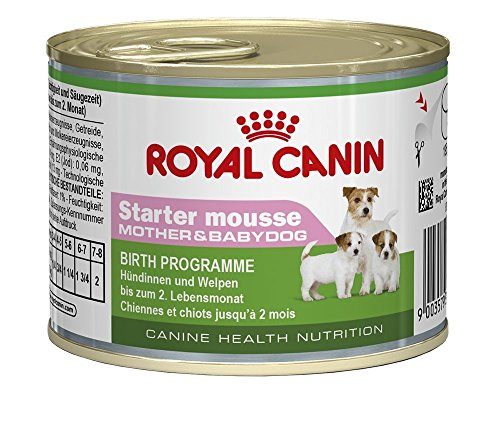 Royal Canin Wet Starter Mousse for dog puppies, 3 cans (Canin Toy Mini Royal)