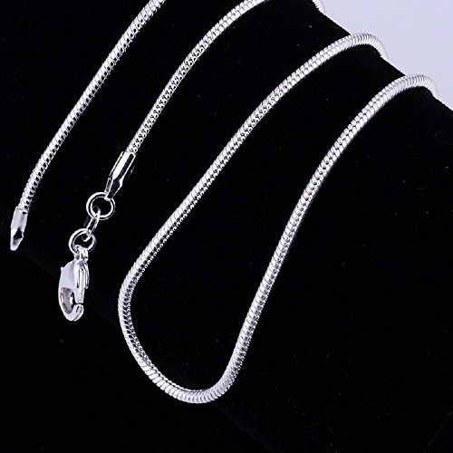 Zhiwen 5pcs 925 Sterling Silver 2MM Rope Chain Lobster Claw Clasp Necklace Jewelry For Men And Women(22 Inch) (20 Inch)