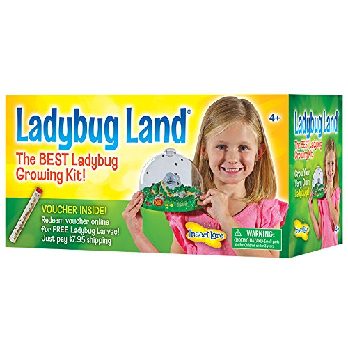 Insect Lore Ladybug Growing Kit - With Voucher to Redeem Baby Ladybug Larvae Later