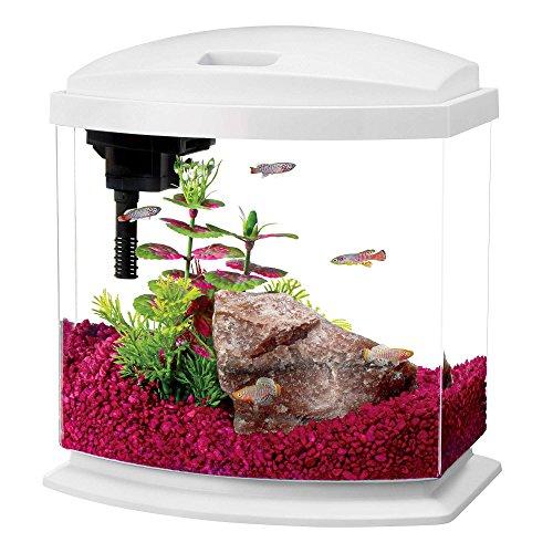 Aqueon MiniBow LED Kit, 2.5 Gallon, White by Aqueon