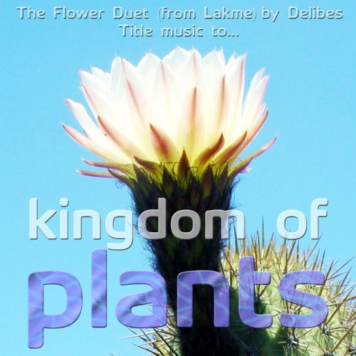 flower-duet-from-lakme-kingdom-of-plants