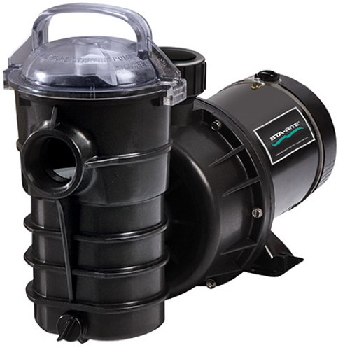 Pentair DYNII-N2-1HP Dynamo Two Speed Aboveground Pool Pump with 3-Feet Standard Cord, 1 HP