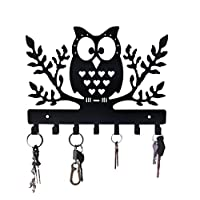 HeavenlyKraft Owl Metal Wall Mounted Metal Key Holder, Owl Key hanger, Medal Hanger, Leash Hanger, Key Organizer, Metal Key hook, 10.6 X 7.48 X 0.8 INCH
