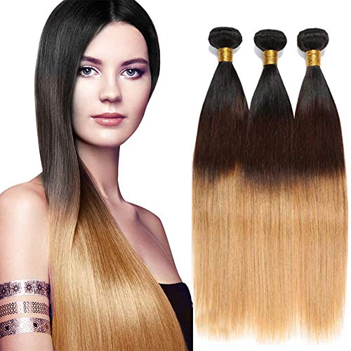 Ombre-Brazilian-Straight-Human-Hair-Bundles-Three-Tone-Color-T1B427-Silky-Straight-Ombre-Hair-Weave-Extensions-3-Bundles-300gJS10-10-10