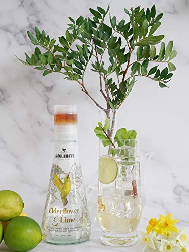 Sparkling Spring Water with Botanically Infused Golden Agave Elixir - Non Alcoholic Cocktail, Sparkling Water & Botanically Flavored Fizzy Drink. All Natural, Low Calorie Beverage. (Pack of 6)