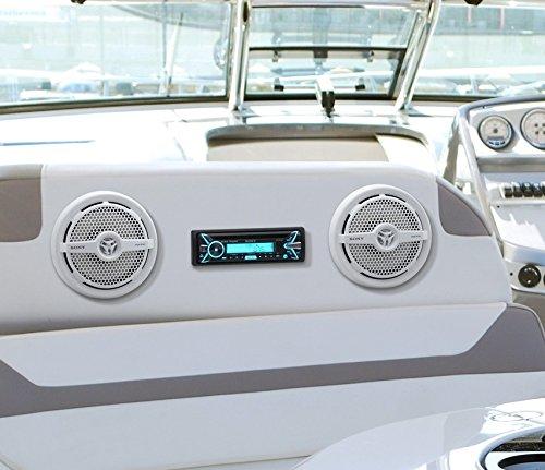 Sony XSMP1621 6 1/2-Inch coaxial 2-way Marine Speaker by Sony (Image #6)