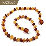 Hazelaid (TM) 12'' Baltic Amber Nutmeg & Lemondrop Necklace