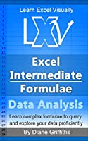 Learn Excel Visually – Excel Intermediate Formulae Front Cover