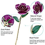 ZJchao-Gifts-for-Women-Long-Stem-Dipped-24k-Gold-Rose-in-Gift-Box-with-Stand-Best-Gift-for-ValentinesMothersAnniversaryBirthdayGalentines-Day-Purple-Rose-with-Stand