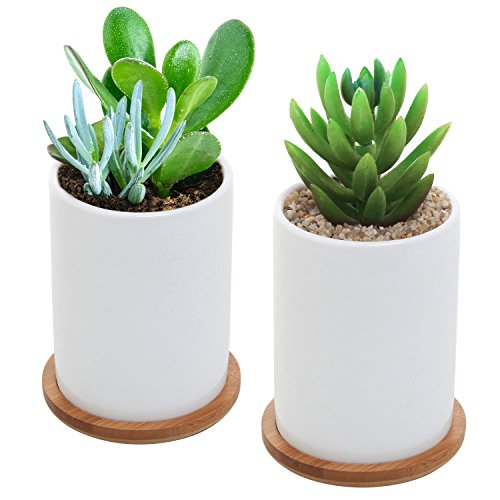 4 Inch Planter - MyGift 4 Inch Set of 2 Ceramic Succulent Plant Pots w/ Removable Bamboo Saucers, White