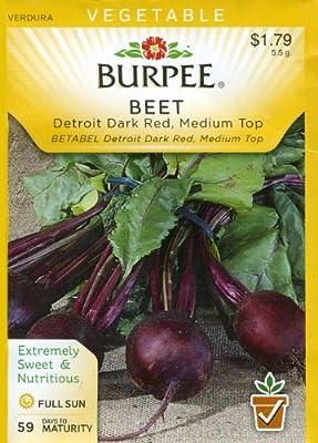 Burpee 65722 Beet Detroit Dark Red, Medium Top Seed Packet