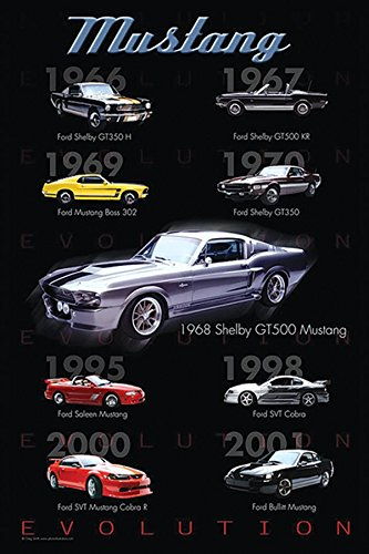 Mustang Evolution Poster - Beyond The Wall Ford Mustang Evolution American Muscle Sports Car Photography Hobby Poster Print (24X36 UNFRAMED Poster)