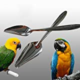 dds5391 Comfortable And Lovely Pet Favorite 1Pc Durable Metal Pet Bird Parrot Feeding Food Milk Powder Spoon Accessory Tool - Silver