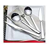 Win Dynasty Silverware Set 18/10 Stainless Steel Flatware Set,20-Piece Cutlery Set Service for 4,Mirror Polished Forks Spoons Knives Set,Dishwasher Safe