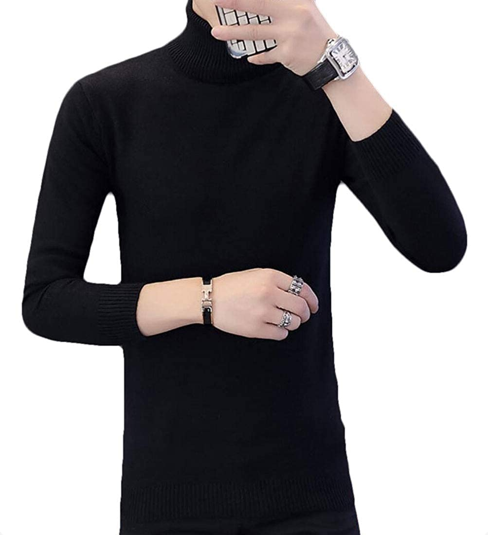 desolateness Mens Ribbed Knitting Turtleneck Long-Sleeve Slim Pullover Sweater