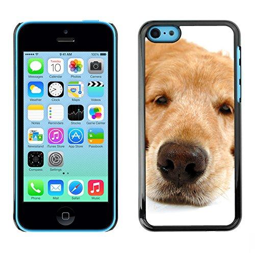Premio Sottile Slim Cassa Custodia Case Cover Shell // V00002230 funny dog // Apple iPhone 5C